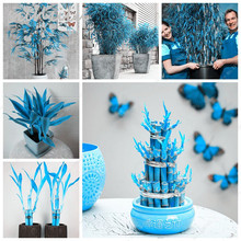 Air Purifying Phoenix Blue Bamboo Seed 50 Pcs Exotic Japanese Lounges  Indoor Flowers Miniascape House Garden