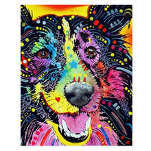 Living Room Decoration,Paintings By Numbers On Canvas,Colorful Dog,Canvas Pictures For