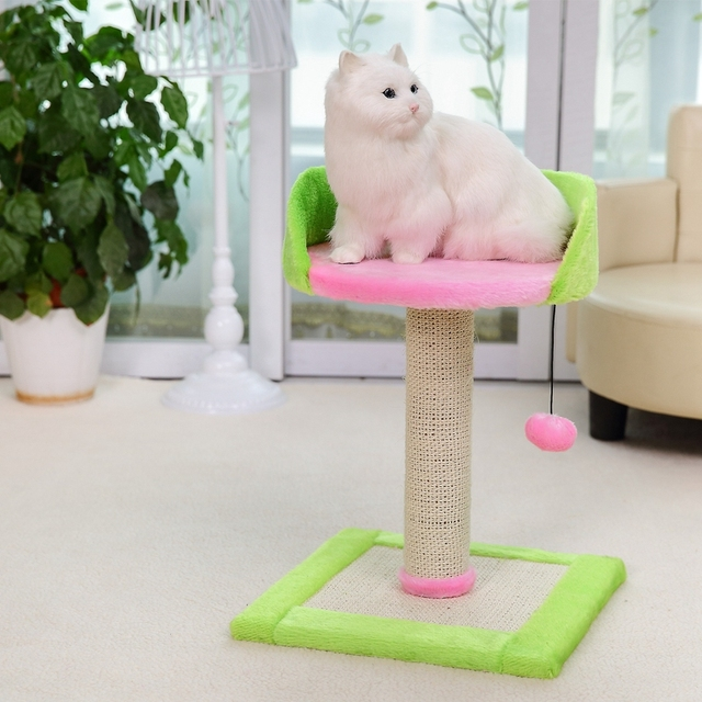 NewArrival Cat Colorful Toy Pet Climbing Tree Cat Jumping Standing Frame Product Kitten Playing Training With Ball High Qaulity