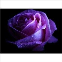 100pcs Rare Purple rose seeds Beautiful Flower seeds rainbow rose seed Bonsai plants Seeds for home & garden