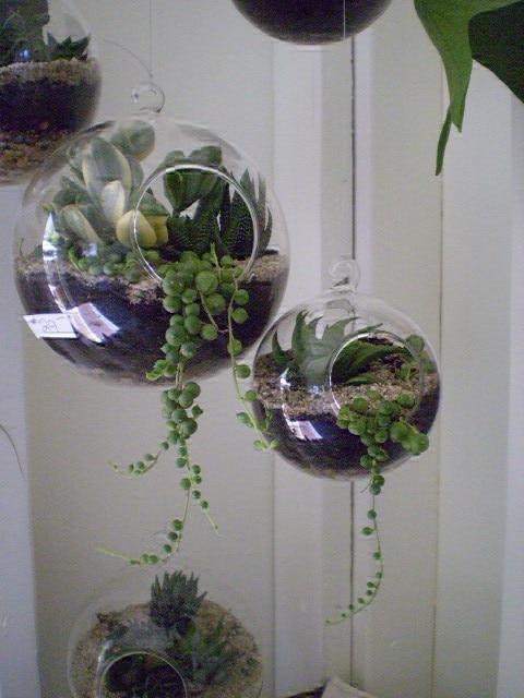4 Pieces Hanging Indoor Planter Vase 5 Inch Orb Terrarium