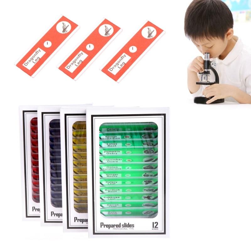 48 Pz/set Preparati Microscopio Vetrini Animali Insetti Piante Fiori Campione W315