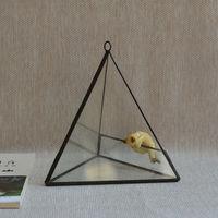 The Geometry Of Micro Glass Greenhouse Landscape Flowerpot Flower Moss Succulents Triangular Ware