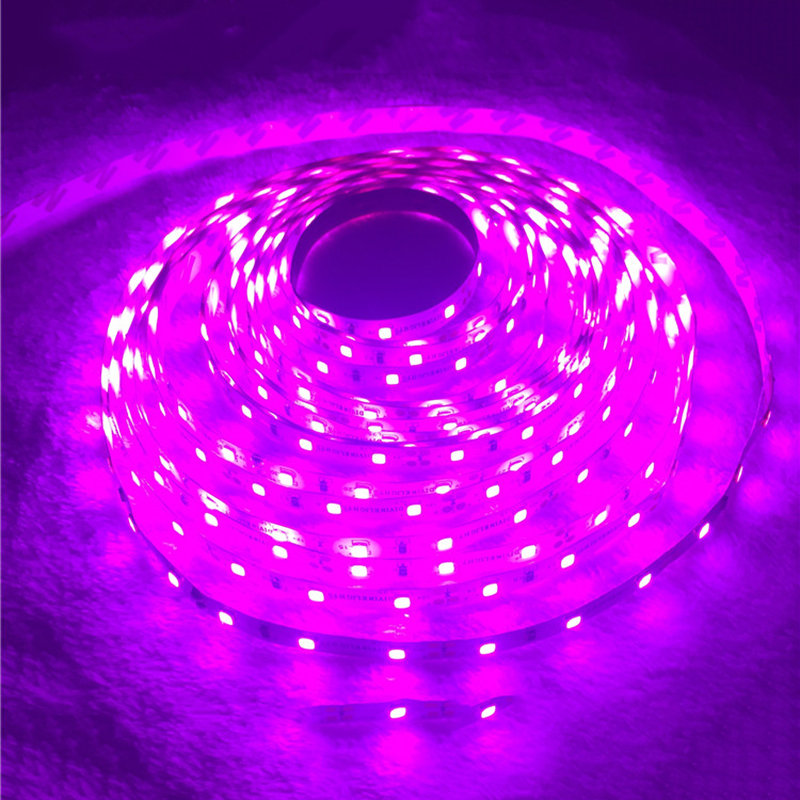 Romantische Roze LED Strip licht IP65 Waterdicht 3528 SMD 60LED / M 5 M flexibele LED touw bar licht DC12V Led decroation tape