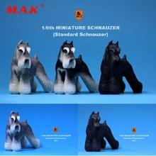 "1:6 Масштаб фигурки аксессуары для сцены MR. Z Смолы миниатюрный Стандартный Schnauzer собака MRZ019 fit 1"" фигурка игрушки аксессуары"