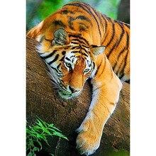 Yi brilhante novo diamante bordado animal tigre 2019 5d pintura diamante praça cheia strass imagem mosaico diamante beadwork