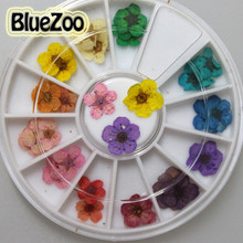 BlueZoo  7mm 9mm Beauty 12 Colors Real Dried Dry Flowers Nail Art Decoration For Phone Small Flowers Nail Art Sticker DIY Tips