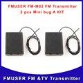 Frete Grátis 2 Pcs de FM-M02 Mini Spy bug escuta rádio FM transmissor de áudio do Microfone 3 V 50 M 240 horas
