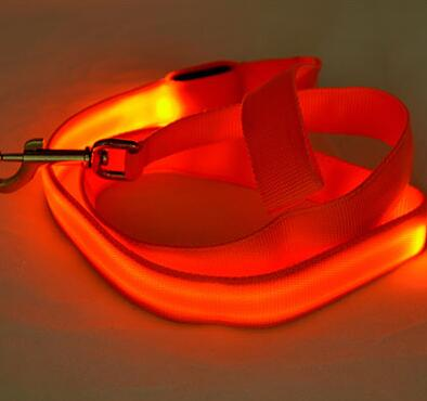 laisse de chien orange LED