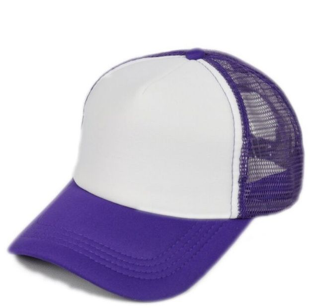 Purple Baseball net 5c64f225d7efa
