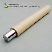 Dia. 25x400 mm NdFeB Magnetic Wand 6K 12K GS Cylinder Filter Neodymium Magnet Stainless Steel 304 Iron Removal