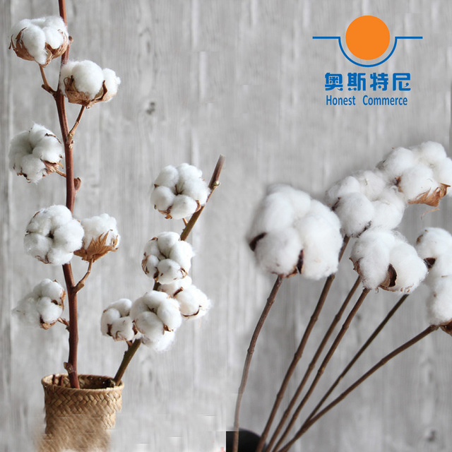 Aliexpress.com : Buy dried artificial flower bouquets dried cotton ...