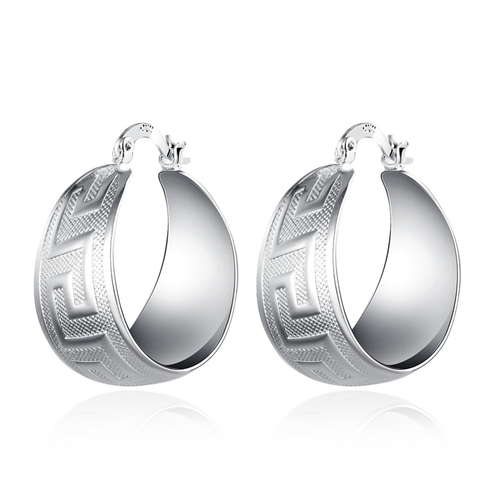 European silver pated jewelry for women / girls luxury charming earrings unique style promotion price jewelry