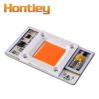 Hontiey 50W White Light LED Chip 6000K 6500K Hight Power Grwoth COB Full Spectrum 380 840Nm