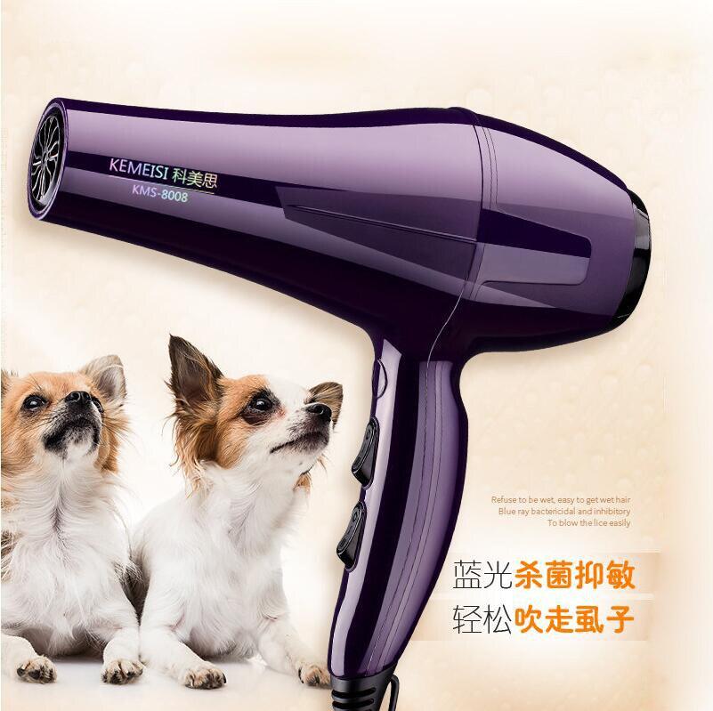 Sèche cheveux pour animaux de compagnie chien grand et petit chiens Teddy chat doré sèche cheveux haute puissance muet souffleuse Machine