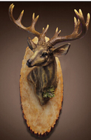 The wall decorations. Bar metope adornment. Creative wall act the role ofing. Deer head hanging.