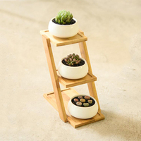 1 Set Ceramic Garden Pots Modern Living Room Decorative Nursery Succulent Plant Pot 3 Bonsai Planters with 3 Tier Bamboo Shelf