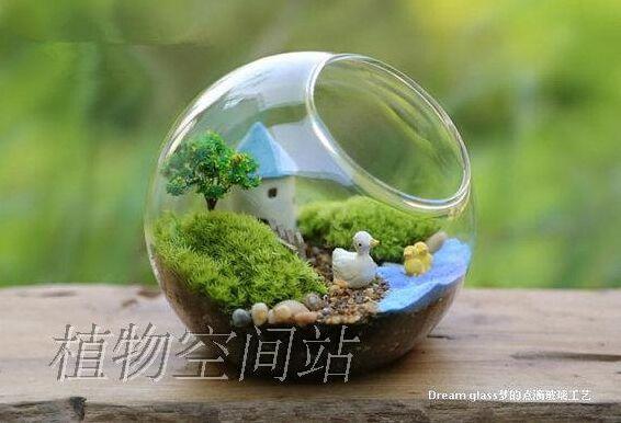 2pcs Set Fashion Desktop Fish Tank Succulent Terrarium Kit With Air