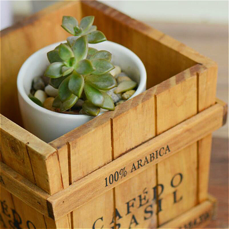 Image 3 - Solid Wood Retro Fleshy Plant Receives Candy Barrels Trays Desktop Receptacle Boxes Potted Wooden Box Gardening Pots Baskets-in Flower Pots & Planters from Home & Garden
