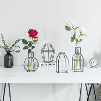 Simple Nordic Iron Geometric Vase Glass hydroponics dried flower Stand Home Garden Decor Tabletop Vases