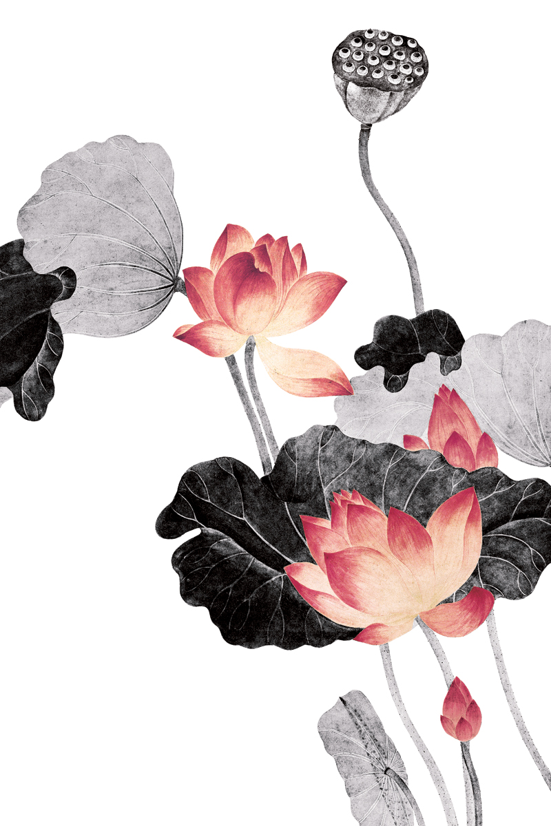 Traditional chinese painting flowers picture painting vintage traditional chinese painting flowers picture painting vintage posters lotus flowers black and red pictures masterpiece in painting calligraphy from home mightylinksfo