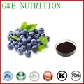Bilberry extract 100% natural Blueberry Extract/Bilberry extract powder 500g/lot