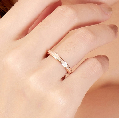 Top Quality Rose Gold color Titanium Steel Simple Frosting