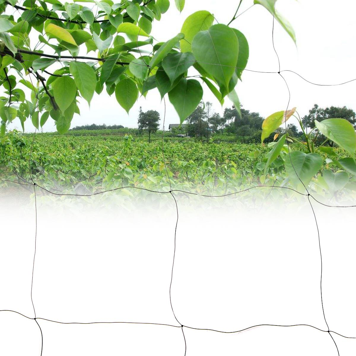 98X16ft Black Anti Bird Netting Soccer Baseball Game Field Mesh Net Canopy Poultry Fish Net Garden Orchard Pest Control Supplies-in Repellents from Home ...  sc 1 st  AliExpress.com & 98X16ft Black Anti Bird Netting Soccer Baseball Game Field Mesh ...