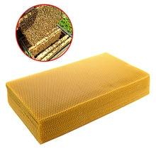 Сотовое оборудование для пчеловодства 200*415 мм гребень основа для Apis mellifera Apiculture пчелиный воск прочные товары для домашнего сада