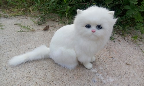 cute simulation white cat polyethylene & fur cat model gift about 27x19cm181 big sitting simulation white cat model plastic