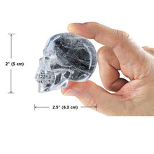 Skull Shape Ice Mold