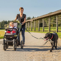 Hands Free Pet Dog Running Leashes For Walking Jogging Dog Leash Rope Reflective Dog Collars Nylon