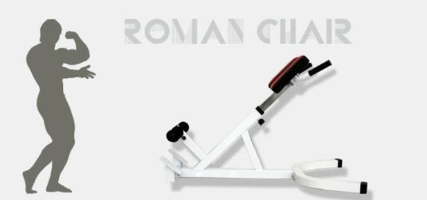 Twisters Roman Chair Hyper Extension Bench Lower Back Core Abs In