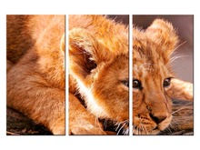 3 pieces / set Lion Canvas Art Print Painting Poster Wall Pictures for Home Decoration wall decor