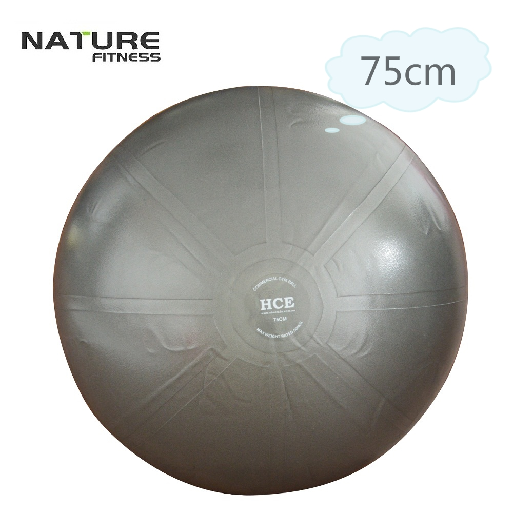 75cm Commerical Gymnastic Fitness Pilates Balance Exercise Gym Fit Yoga Core Ball Indoor Fitness Training Yoga Ball free pump