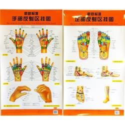 Новейшие Стандартный отражение голограммы руки/стопы двуязычный диаграммы китайский и английский для самостоятельного Средства ухода за