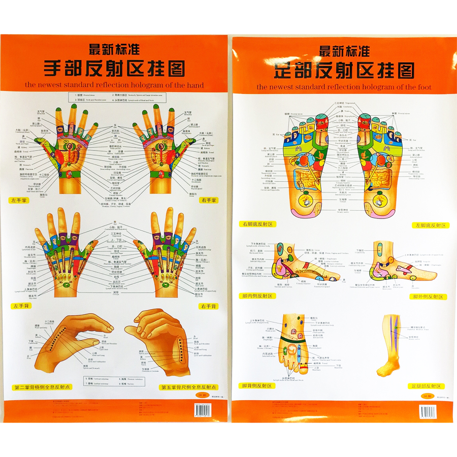 The Newest Standard Reflection Hologram Of The Hand / Foot Bilingual Charts Chinese And English For Self Care