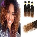 3 Bundle Deals 8A Brazilian Deep Wave Ombre Deep Curly Hair Deep Curly Hair Ombre Brazilian Human Hair Weave Deep Curly Hair