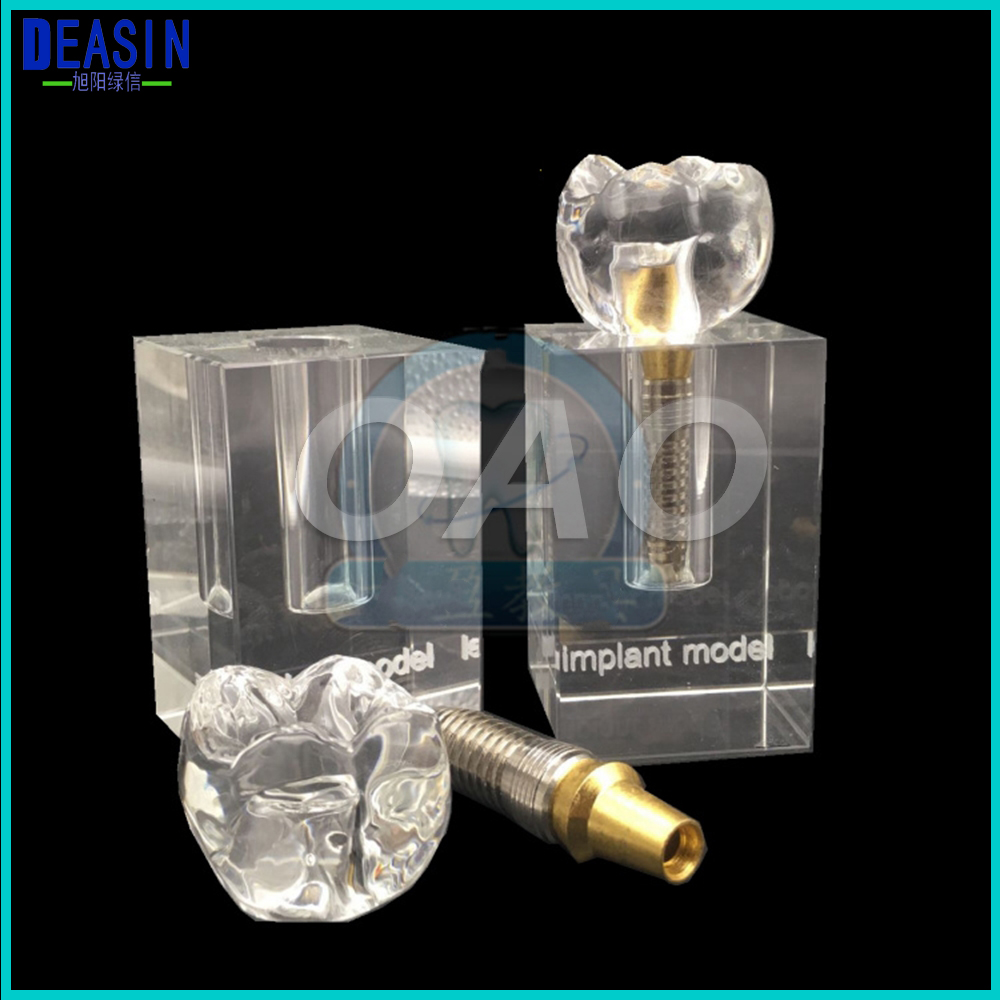 Medical Science tooth model Transparent crystal implant models Removable implant attachments retaining implant overdentures