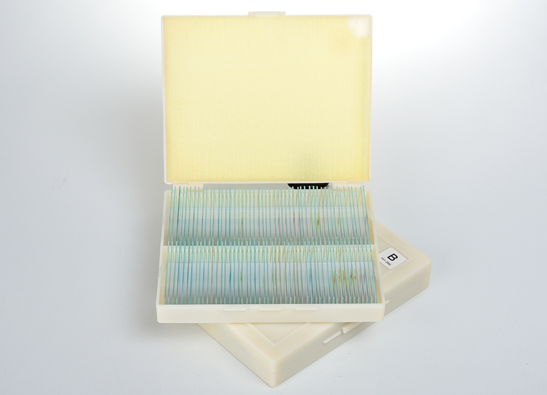 200pc Prepared Microscope Slides for Basic Science Biology Education cell biology and genetics prepared slides
