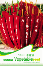 Red Dried Hot Chili Hunan Pepper Organic Seeds, Organic Pack, 30 Seeds / Pack, Edible Vegetables C012