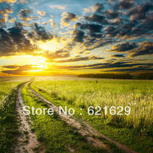 Natural scenery 8 x8 CP Computer painted Scenic Photography Background font b Photo b font Studio