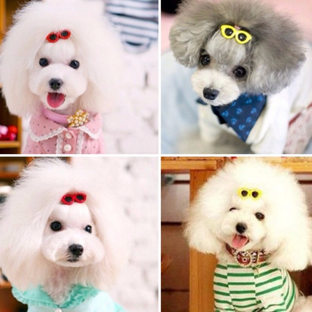 Best & Cheap Hair Clips Heart Glasses Grooming Supplies for Dogs & Cats Hair Accessories