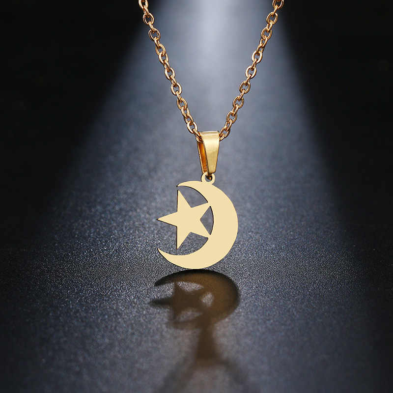 DOTIFI Stainless Steel Necklace For Women Lover's Gold And Silver Color Moon & Star  Pendant Necklace Engagement Jewelry