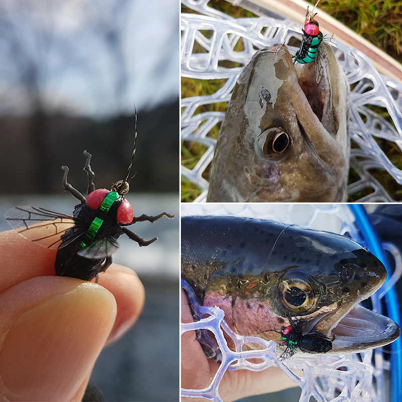 New 20 Pcs Fly Fishing Wet Flies Realistic House Insect Bait For Trout Fishing