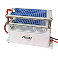 220V 24g generador de ozono de cerámica doble integrado placa de cerámica de larga vida ozonizador de agua de aire purificador de aire