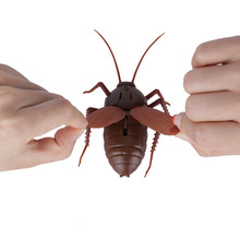 RC Cockroach Children Adult Remote Control Toys