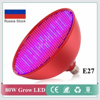 2 Pcs Lot 80W E27 LED Plant Grow Lights 800PCS SMD LED Chips RED BLUE Hydroponics