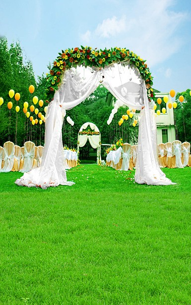 photo studio backdrop,green screen weeding backdrop,vestido de noiva,vinyl backdrops for photography150X200cm customized3602 ashanks photography backdrops green screen 3 4m photo background for photo studio 10ft 13ft backdrop for camera fotografica
