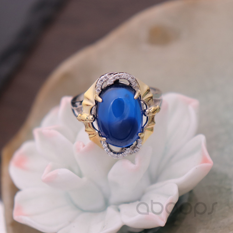 Blue Ring-2